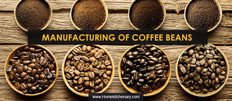 Manufacturing Of Coffee Beans (2)
