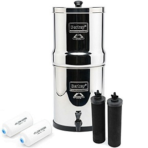 Big Berkey BK4X2 Water Filter System