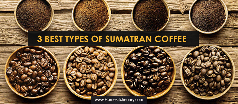 Types of Sumatra Coffee Beans