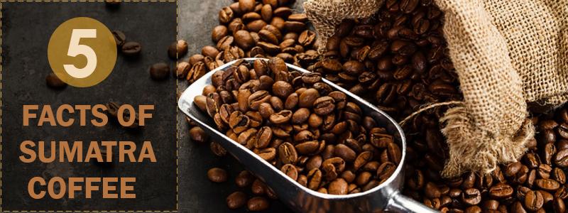 Sumatra Coffee Taste