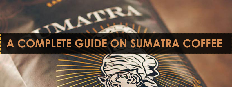 A Complete Guide on Sumatra Coffee