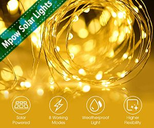 Best Outdoor Solar String Lights