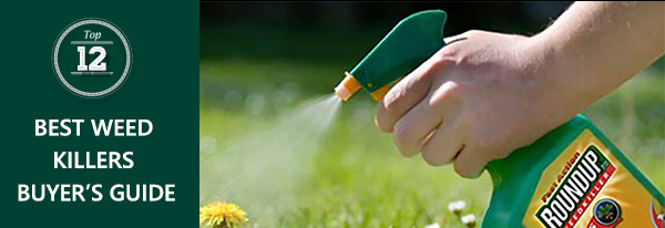 Best weed killer reviews