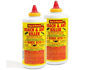 best roach traps