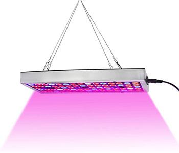 600 watt led grow light